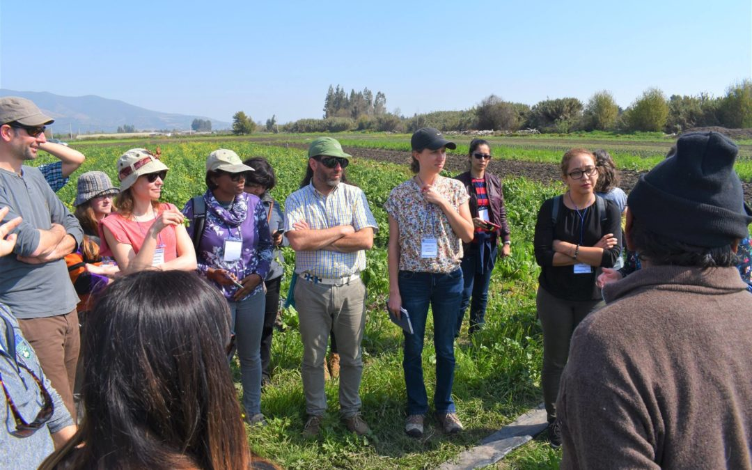 We participated in the Newton Fund Workshop on ecosystem services and smallholder farms