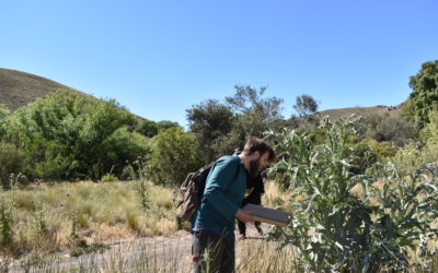 Visit of Agustín Lovrich and his encounter with Patagonian ants